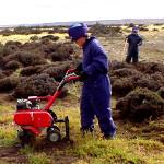 BP_mesetacentral_Ficha6_Remediación de suelos contaminados por bioestimulación